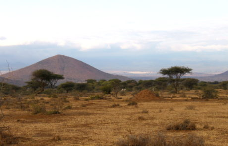 Maasai village safari culture